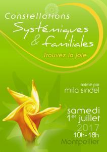 Stage de Constellations Systémiques et Familiales