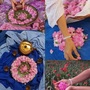 MAROC-Vallée des Roses-Eclosion de sa Femme-Fleur-Prendre soin de Soi