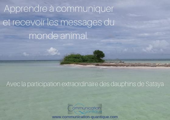 Communication Quantique, Animale et Nage avec les dauphins